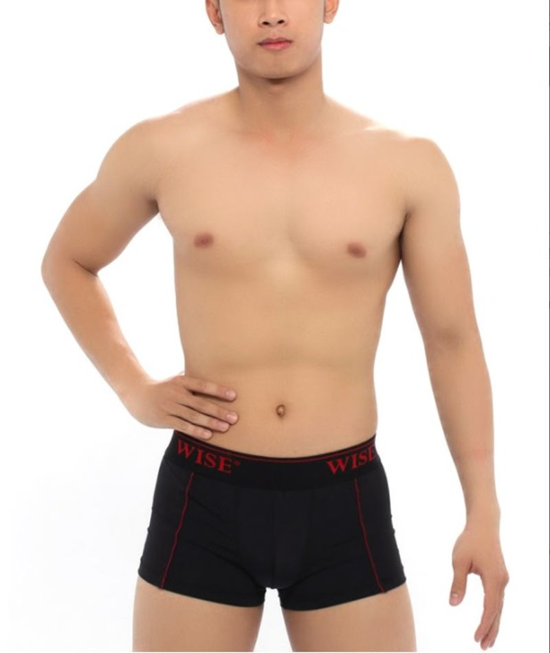Quần Boxer Nam Wise 9008 giá sỉ, giá bán buôn