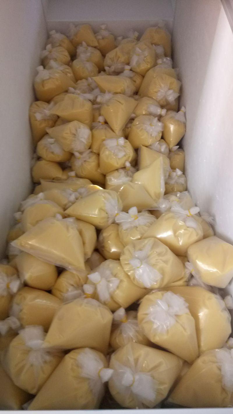 Sữa ong chúa tươi giá sỉ, giá bán buôn