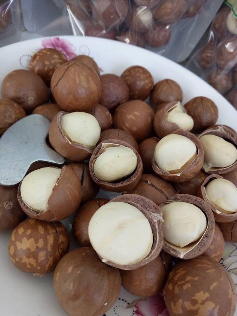 Hạt macca sấy khô Lâm Đồng giá sỉ, giá bán buôn