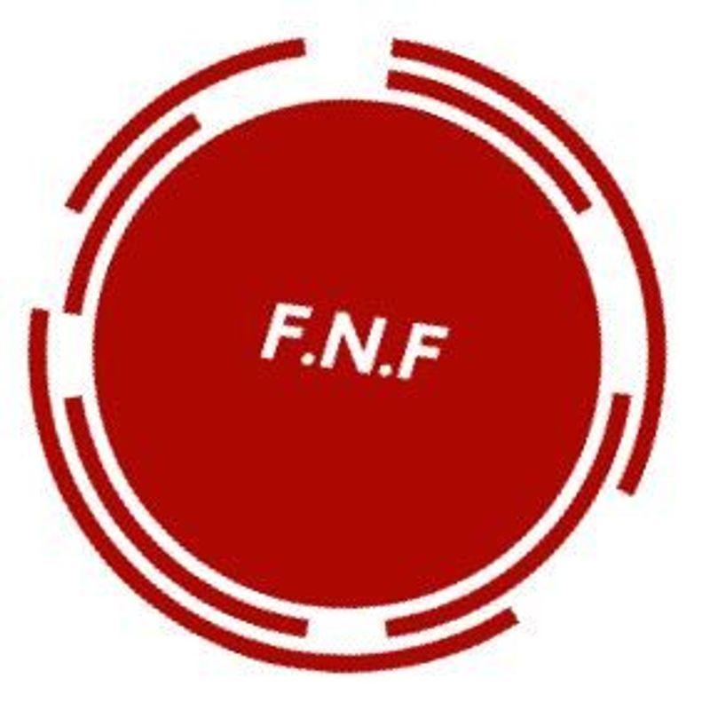 Công ty F.N.F