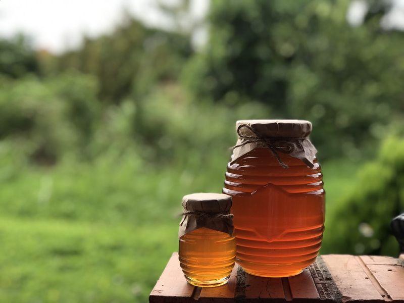 Mật ong hoa cà phê Đắc Lak nguyên chất giá sỉ, giá bán buôn