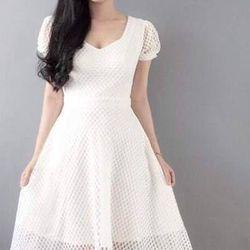 Đầm xoè ren lưới giá sỉ