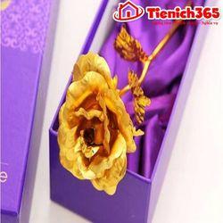 Hoa hồng mạ vàng 24k giá sỉ
