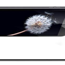 Cường lực Hoco Iphone 6s full màn 3D 6s( Đen + trắng) giá sỉ