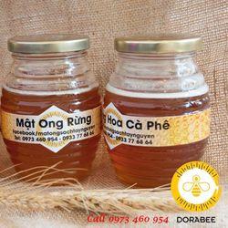 Mật ong Hoa Cà phê khai thác tại Gia Lai
