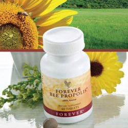 Sản phẩm từ ong Viên nén Forever Bee Propolis giá sỉ, giá bán buôn