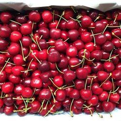 Cherry Mỹ size 9 washington giá sỉ