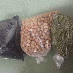 Cung cấp đậu phộng hạt