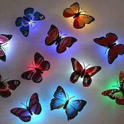 bướm phát quang