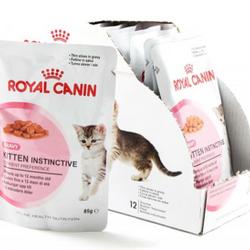 pate dành cho mèo cực ngon đầy đủ chất dinh dưỡng giá sỉ