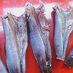Khô Cá Lóc nguyên con giá sỉ