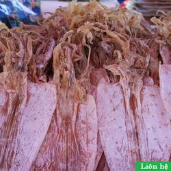 Đại lý chuyên cung cấp cá cơm khô mực khô mực tươi Hàng tại biển Bình Minh Quảng Nam giá sỉ