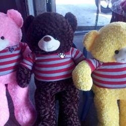 gấu bông gấu teddy quà tặng khổ 1mx80cm giá sỉ