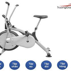 Xe đạp tập thể dục Air Bike Trường Giang Sport giá sỉ