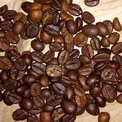 cà phê nguyên hạt giá sỉ