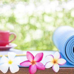 Thảm tập Yoga kích thước 17361