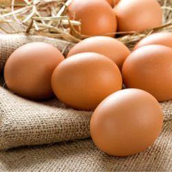 Trứng Gà Egypt Vàng Tươi Sạch A1 giá sỉ