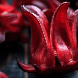 Mứt Atiso đỏ Mứt hoa hồng – Quà biếu tết đầy ý nghĩa giá sỉ