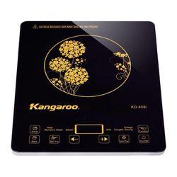 Bếp từ Kangaroo KG408 kèm nồi inox giá sỉ