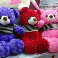 Gấu teddy quà tặng khổ 65cm giá sỉ, giá bán buôn