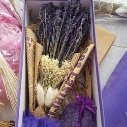 Lavender giá sỉ