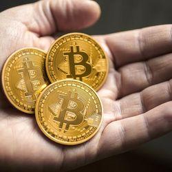 Đồng Bitcoin vàng 40mm Có hộp nhựa kèm theo giá sỉ