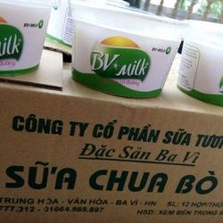 Sữa chua bò giá sỉ