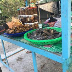 Khô Cá Lóc Đồng Tháp giá sỉ