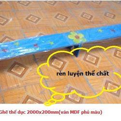 Ghế thể dục 2000x200mmván MDF phủ màu-TC5T-04 giá sỉ