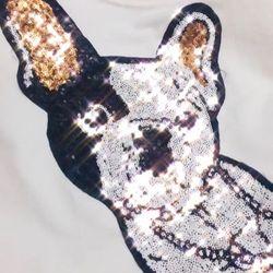áo phông chó