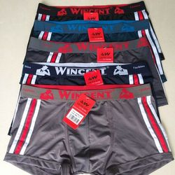 boxer wincent giá sỉ