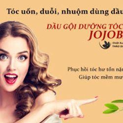 Dầu gội dưỡng tóc Jojoba dooc659 quyền Damode 265ml dành cho nam nữ giá sỉ