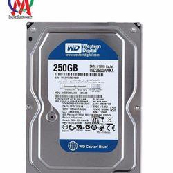 Ổ CỨNG PC 250GB WD - BH 24 THÁNG giá sỉ