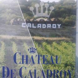 Rượu vang ROSE DES VENTS 2016 giá sỉ