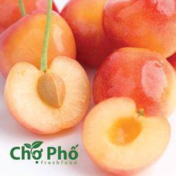 Cherry Vàng Size 9 Trực Tiếp Mỹ giá sỉ