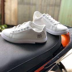 giày bata trắng 1 giá sỉ