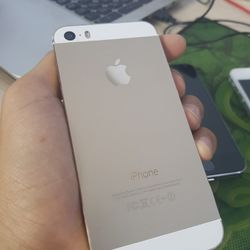 iphone 5s - 16Gb Gold giá sỉ