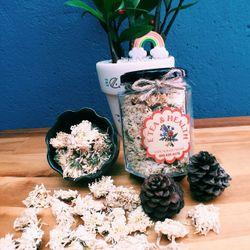 Trà hoa cúc giá sỉ