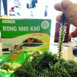Rong nho biển Nha Trang giá sỉ