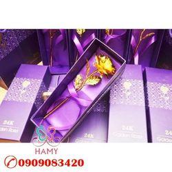 Hoa hồng mạ vàng 24K loại - quà tặng 8/3 giá sỉ