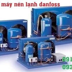 Thay Block máy lạnh Danfoss MT80 7HP cho hệ thống lạnh công nghiệp giá sỉ