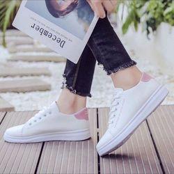 giày the thao nu giá sỉ
