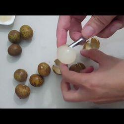 Dụng cụ lấy hạt nhãn hạt vải đơn giản tiện dụng