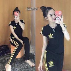 đồ bộ quần dài thể thao thun cô tôn lô gô theu soc 8 giá sỉ, giá bán buôn