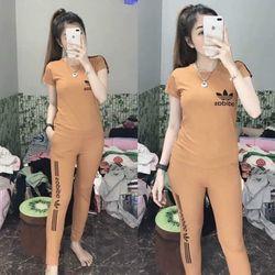 đồ bộ quần dài thể thao thun cô tôn lô gô in soc 3 giá sỉ, giá bán buôn