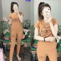 đồ bộ quần dài thể thao thun cô tôn lô gô theu soc 4 giá sỉ, giá bán buôn