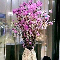 Bó 40 cành hoa Đỗ quyên
