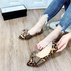 giày bup bê beo xinh giá sỉ