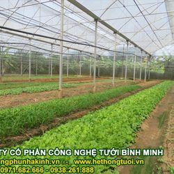 Thiết kế nhà lưới trồng rau bản vẽ thiết kế nhà lưới kỹ thuật thiết kế nhà lưới bản vẽ nhà lưới trồng rau giá sỉ