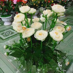 hoa hồng vải lụa